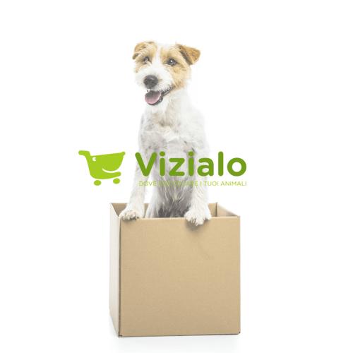 Pet Store E-Commerce: Vizialo